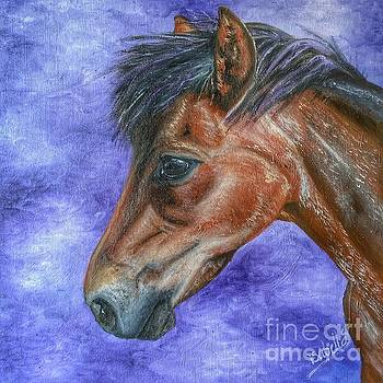 Portrait of a Pony by Abbie Shores
