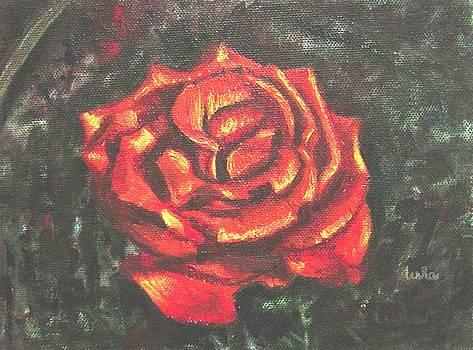 Usha Shantharam - Portrait of a Rose 2