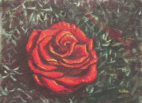 Usha Shantharam - Portrait of a Rose 4