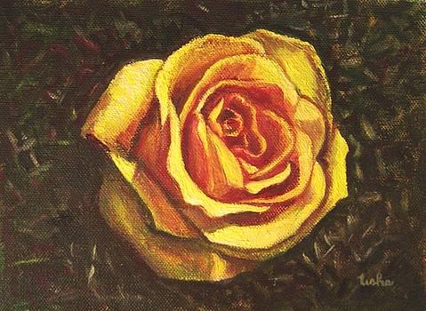 Usha Shantharam - Portrait of a Rose 5