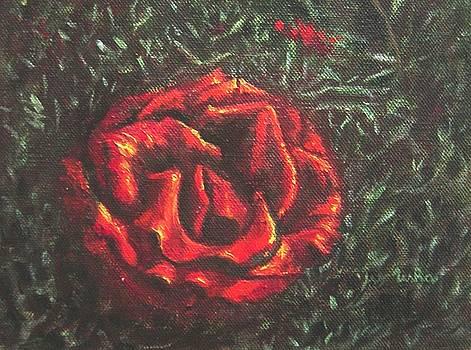 Usha Shantharam - Portrait of a Rose 6