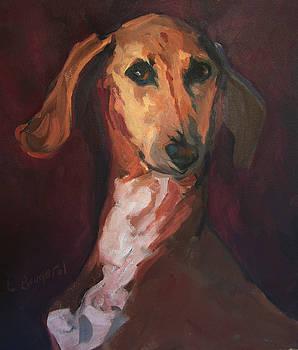 Portrait of a Vizsla  by Lynn Gimby-Bougerol