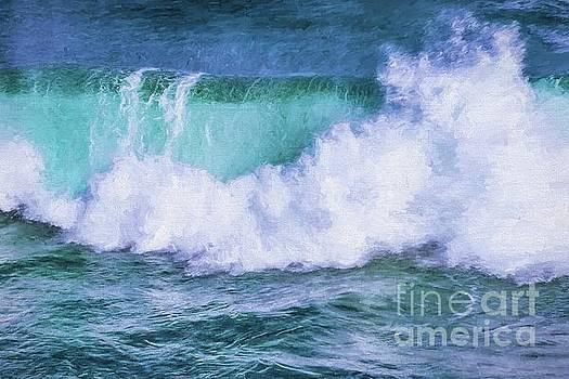 Portrait of a wave by Howard Ferrier