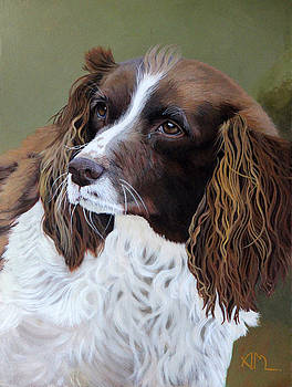 Portrait of Jesse - Springer Spaniel by Antonio Marchese