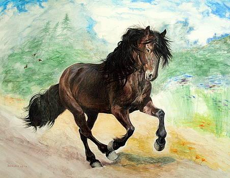 Portrait of Phantom Canadian Horse by Jill Iversen