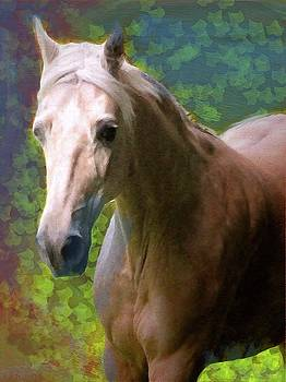 Portrait of The Paso Fino Mare by Patricia Keller
