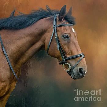 Portrait of Zi by Brian Tarr