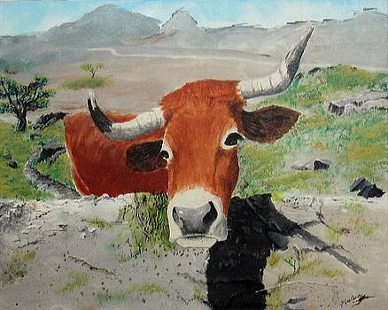 Portuguese Cow by Jeanine Jacildone