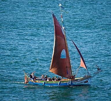 Portuguese Sailboat by Eric Tressler