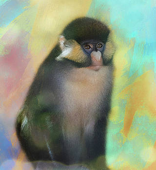 Posed Spider Monkey by Gloria Anderson
