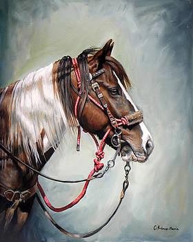 Posse Pony by Carole Andreen-Harris