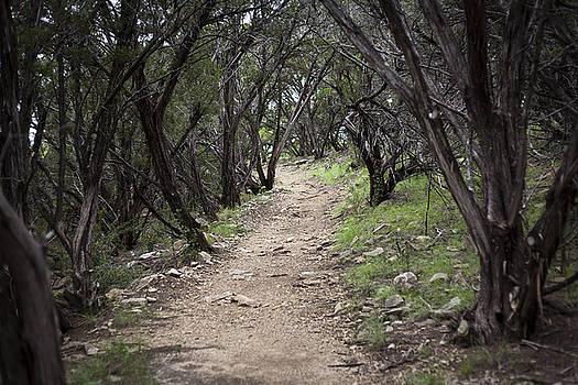 Possum Kingdom Dark Trail by Jennifer Zandstra