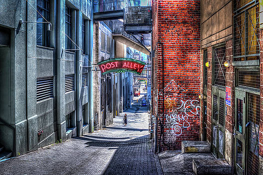 Post Alley Straggler by Spencer McDonald