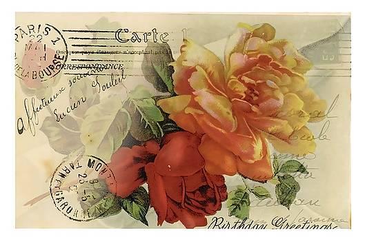 Postal by Kim Kent