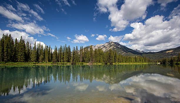 Postcard from Banff by Celine Pollard