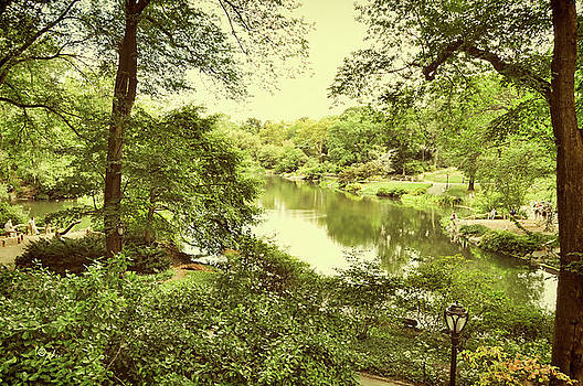 Paulette B Wright - Postcard From New York - Central Park