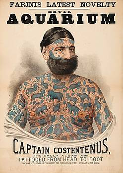 Poster of Captain Costentenus tattooed from head to foot by Unknown