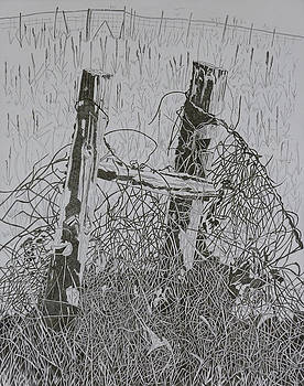 Posts and S Barb Wire by Karen Merry