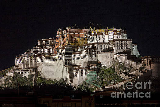 Potala palace at night by Hitendra SINKAR