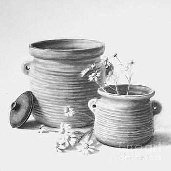 Pots of luck I by Anna Starkova
