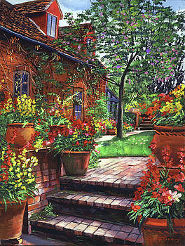 Pots Of Wallflowers by David Lloyd Glover