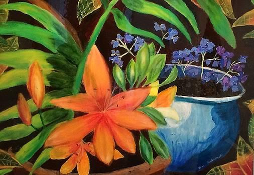 Potted flowers by Jason Rosenstock