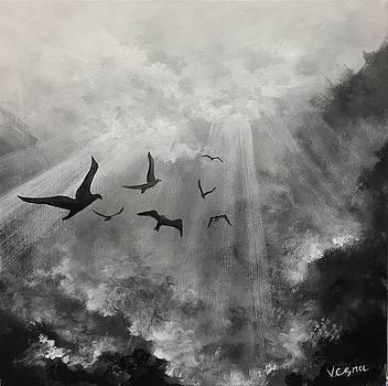 Pouring Light  by Vesna Delevska