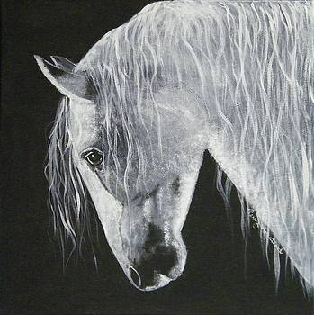 Power Horse by Terry Honstead