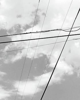 Power Lines // #minimal #minimalist by Megan Bishop