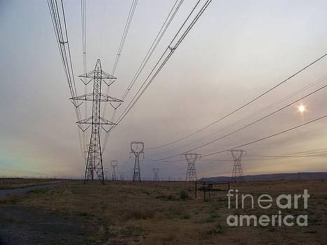 Power Lines by Julie Rauscher