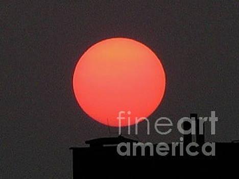 Poznan Sun by Mary Kobet