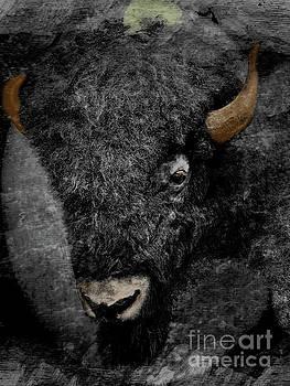 Prairie Bison II by Al Bourassa