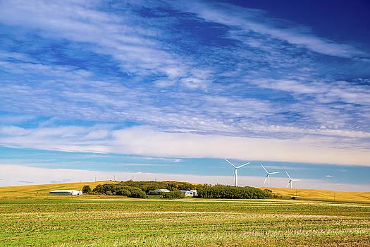 Prairie Countryside by Nebojsa Novakovic