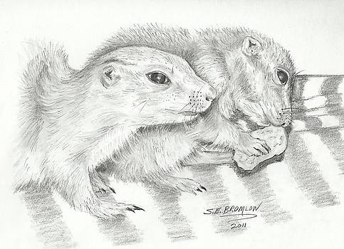 Prairie Dogs by Susan Bromlow