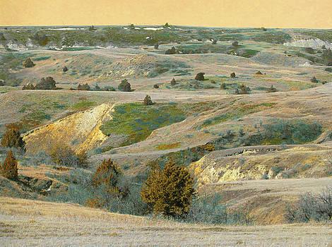 Prairie Dream of Spring by Cris Fulton