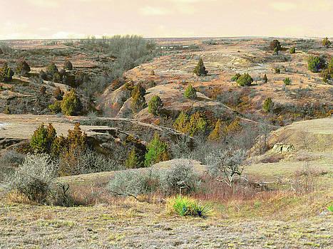 Prairie Edge Reverie by Cris Fulton
