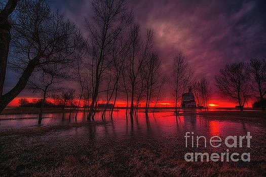 Prairie Glory by Ian McGregor