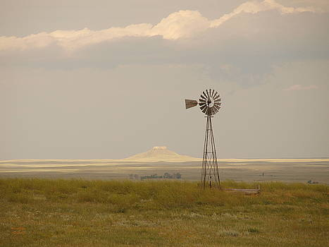 Prairie by Gordon Collins