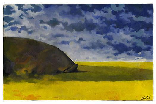 Prairie Grouper by Martin Tielli