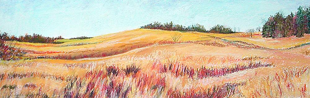 Prairie III by Lucinda  Hansen