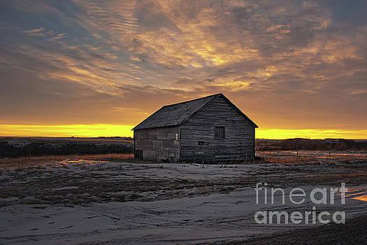 Prairie Morning by Ian McGregor
