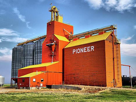 Prairie Prioneer by Blair Wainman