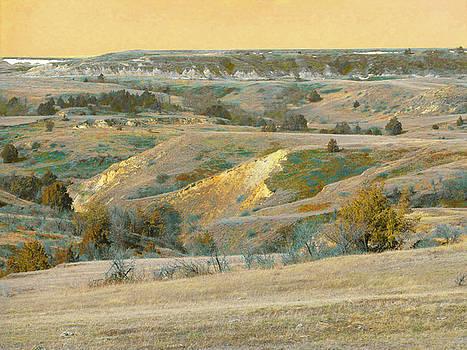 Prairie Ridge Reverie by Cris Fulton