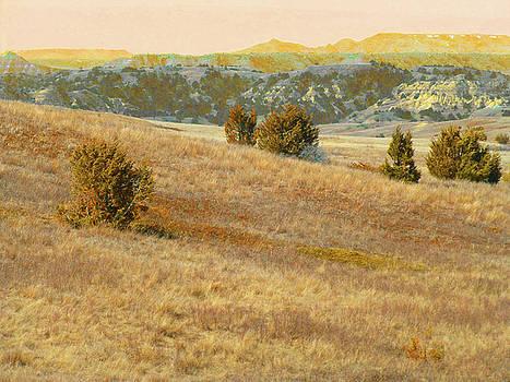 Prairie Ridgeline Reverie by Cris Fulton