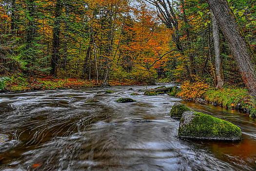 Dale Kauzlaric - Prairie River Long Fall Flow