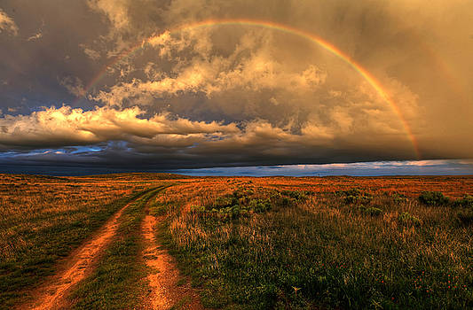 Prairie Roads Lead to Gold by Chris Allington
