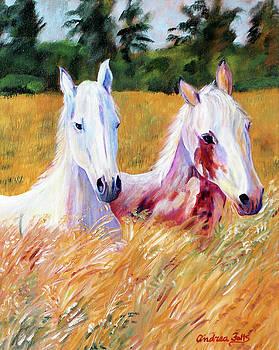 Prairie Run by Andrea Folts