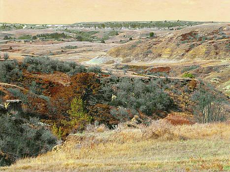 Prairie Slope Reverie by Cris Fulton