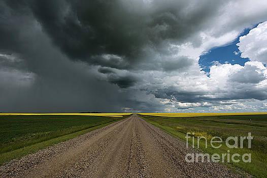 Prairie Summer Road by Ian McGregor