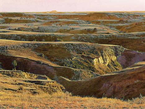 Prairie Sunset Reverie by Cris Fulton